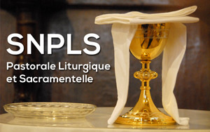 Logo_SNPLS
