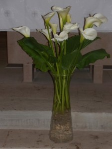 """""""Les fleurs préférées de ma maman"""""""